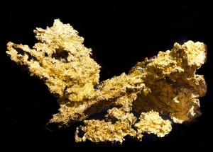 Fricot Nugget - Crystaline Gold